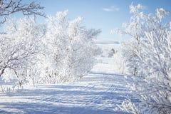 Ένα όμορφο άσπρο τοπίο μιας χιονώδους χειμερινής ημέρας με τις διαδρομές για το όχημα για το χιόνι ή το έλκηθρο σκυλιών Στοκ εικόνα με δικαίωμα ελεύθερης χρήσης