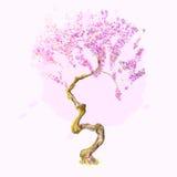 Ένα όμορφο δέντρο κερασιών watercolor Στοκ Εικόνες