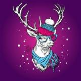 Ένα όμορφο ελάφι σε ένα χειμερινά καπέλο και ένα μαντίλι Διανυσματική απεικόνιση για μια κάρτα Στοκ φωτογραφία με δικαίωμα ελεύθερης χρήσης