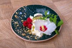 Ένα όμορφο επιδόρπιο suumer σε ένα ξύλινο υπόβαθρο Ένα μπλε γύρω από το πιάτο αργίλου με το άσπρο παγωτό Κρύο παγωτό με το α Στοκ Εικόνες
