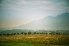 Ένα όμορφο, ζωηρόχρωμο, αφηρημένο τοπίο βουνών με μια καυτή θερινή ελαφριά ομίχλη στη θερμή πράσινη τονικότητα Στοκ φωτογραφία με δικαίωμα ελεύθερης χρήσης