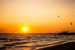 Ένα όμορφο ηλιοβασίλεμα πέρα από τη θάλασσα Εγκωμίασε για το σκάφος Σκάφος στο ηλιοβασίλεμα Η πτήση seagulls στον ήλιο ρύθμισης Στοκ Εικόνες