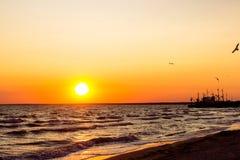 Ένα όμορφο ηλιοβασίλεμα πυρκαγιάς στην παραλία, με τα πουλιά που πετούν στον ήλιο και ένα κιβώτιο στον ορίζοντα Στοκ εικόνα με δικαίωμα ελεύθερης χρήσης