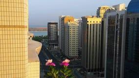 Ένα όμορφο ηλιοβασίλεμα στην πόλη χαλαρώνοντας άποψη από ένα μπαλκόνι με τα όμορφα λουλούδια και τα πουλιά φιλμ μικρού μήκους