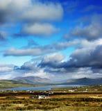 Ένα όμορφο ιρλανδικό τοπίο της ιρλανδικής αγελάδας κομητειών, Ιρλανδία στοκ εικόνες