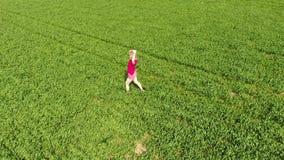 Ένα όμορφο νέο ξανθό κορίτσι περπατά κατά μήκος του τομέα του νέου σίτου Μια γυναίκα σε μια κόκκινη μπλούζα θέτει μπροστά από φιλμ μικρού μήκους