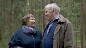 Ένα όμορφο παλαιό ζεύγος περπατά στο πάρκο Ήπια η λαβή επάνω, εξετάζει η μια την άλλη, το γέλιο και τη συζήτηση καλές σχέσεις απόθεμα βίντεο
