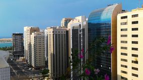 Ένα όμορφο πρωί στην πόλη χαλαρώνοντας άποψη από ένα μπαλκόνι με τα όμορφα λουλούδια απόθεμα βίντεο