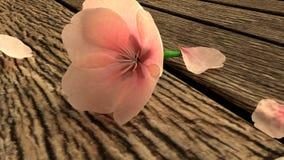 Ένα όμορφο ρόδινο λουλούδι ανθών κερασιών στην ξύλινη γέφυρα Απεικόνιση αποθεμάτων