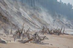 Ένα όμορφο τοπίο παραλιών σε μια θυελλώδη ημέρα, φυσώντας άμμος αέρα μέχρι τους υψηλούς αμμώδεις απότομους βράχους Τοπίο άνοιξη σ Στοκ Φωτογραφία