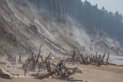 Ένα όμορφο τοπίο παραλιών σε μια θυελλώδη ημέρα, φυσώντας άμμος αέρα μέχρι τους υψηλούς αμμώδεις απότομους βράχους Τοπίο άνοιξη σ Στοκ εικόνα με δικαίωμα ελεύθερης χρήσης