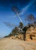Ένα όμορφο τοπίο των αμμόλοφων στην ακτή της θάλασσας της Βαλτικής Στοκ εικόνες με δικαίωμα ελεύθερης χρήσης