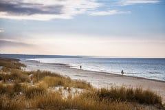 Ένα όμορφο τοπίο των αμμόλοφων στην ακτή της θάλασσας της Βαλτικής Στοκ εικόνα με δικαίωμα ελεύθερης χρήσης