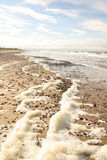Ένα όμορφο τοπίο των αμμόλοφων στην ακτή της θάλασσας της Βαλτικής Στοκ φωτογραφία με δικαίωμα ελεύθερης χρήσης