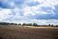 Ένα όμορφο τοπίο χωρών με τους τομείς ενός σίτου που τεντώνουν στην απόσταση Στοκ Εικόνες