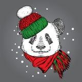 Ένα όμορφο panda σε ένα χειμερινά καπέλο και ένα μαντίλι αντέξτε χαριτωμένο Στοκ φωτογραφία με δικαίωμα ελεύθερης χρήσης