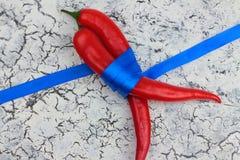 Ένα δώρο δύο πιπεριών Στοκ εικόνες με δικαίωμα ελεύθερης χρήσης