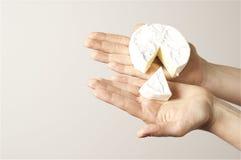 Ένα camembert εκμετάλλευσης χεριών τυρί - καλλιτεχνικό φως στοκ εικόνα με δικαίωμα ελεύθερης χρήσης