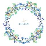 Ένα floral πλαίσιο κύκλων (στεφάνι) των μπλε λουλουδιών watercolor και των πράσινων φύλλων, μια θέση για ένα κείμενο διανυσματική απεικόνιση
