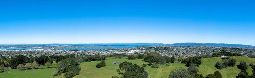 Ένα Hill δέντρων, Ώκλαντ Νέα Ζηλανδία Στοκ Εικόνες