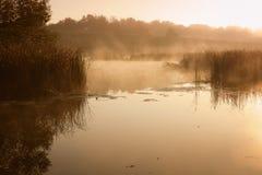 Ένα misty πρωί από τη λίμνη Διάστημα για το κείμενο στοκ φωτογραφίες