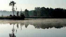 Ένα misty πρωί στο νερό απόθεμα βίντεο