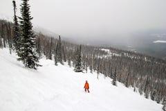 Ένα snowboarder στην κλίση κάλυψε το χιόνι σε ένα υπόβαθρο του χειμερινών δάσους και των βουνών Στοκ Φωτογραφίες