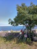 Ένα stonehouse Στοκ εικόνα με δικαίωμα ελεύθερης χρήσης
