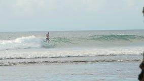 Ένα surfer οδηγά ένα κύμα στην κυματωγή στο ωκεάνιο μπλε στο σημείο Μπαλί κυματωγών απόθεμα βίντεο