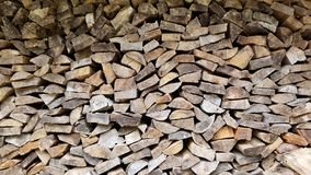Ένα woodchuck ξύλο στοκ εικόνες