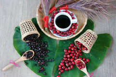 Έννοια αρμονίας, φασόλι καφέ, μαύρος ψημένος καφές Στοκ Εικόνα