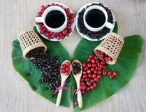 Έννοια αρμονίας, φασόλι καφέ, μαύρος ψημένος καφές Στοκ Εικόνες
