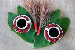 Έννοια αρμονίας, φασόλι καφέ, μαύρος ψημένος καφές Στοκ εικόνα με δικαίωμα ελεύθερης χρήσης
