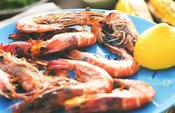 Έννοια γεύσης κόμματος εορτασμού μεσημεριανού γεύματος τροφίμων Στοκ εικόνες με δικαίωμα ελεύθερης χρήσης