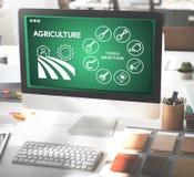 Έννοια εγκαταστάσεων παραγωγής αγροτικών συγκομιδών γεωργίας στοκ φωτογραφία με δικαίωμα ελεύθερης χρήσης