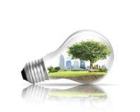 Έννοια εναλλακτικής ενέργειας λαμπών φωτός Στοκ Φωτογραφίες