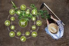 Έννοια ηλεκτρονικού εμπορίου εξοπλισμού κηπουρικής, σε απευθείας σύνδεση εικονίδια εργαλείων κήπων αγορών, άτομο που φυτεύει εγκα στοκ φωτογραφία με δικαίωμα ελεύθερης χρήσης