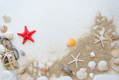 Έννοια θάλασσας θερινών παραλιών Άσπρο υπόβαθρο με τα διαφορετικά κοχύλια, άσπρες πέτρες και άμμος Κόκκινο sratfish στο κέντρο Στοκ Φωτογραφία