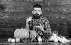 Έννοια καλλιέργειας και συγκομιδής Το άτομο γενειοφόρο κρατά το ξύλινο υπόβαθρο σταφυλιών Farmer με τη homegrown συγκομιδή στον π στοκ εικόνες
