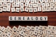 Έννοια λέξης γενεαλογίας στους κύβους στοκ φωτογραφίες