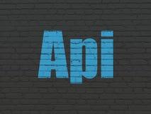 Έννοια λογισμικού: API στο υπόβαθρο τοίχων Στοκ Φωτογραφίες