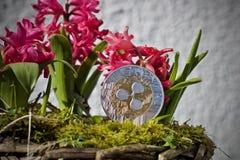 Έννοια λουλουδιών νομισμάτων κυματισμών Στοκ εικόνα με δικαίωμα ελεύθερης χρήσης