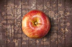 Έννοια με το μήλο και doodles Στοκ Φωτογραφία