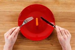 Έννοια να κάνει δίαιτα, υγιής κατανάλωση Στοκ φωτογραφίες με δικαίωμα ελεύθερης χρήσης