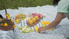 Έννοια να φάει υπαίθρια picnic πάρκων Βρασμένο καλαμπόκι, αυγά, καρπούζι, χυμός απόθεμα βίντεο