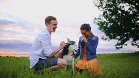 Έννοια οικογένειας, κατοικίδιων ζώων, ζώων και ανθρώπων - ευτυχές ζεύγος με retriever του Λαμπραντόρ το σκυλί που περπατά στο πάρ απόθεμα βίντεο
