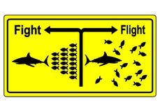 Έννοια πάλης ή πτήσης Στοκ Φωτογραφία