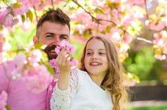 Έννοια παιδικής ηλικίας Πατέρας και κόρη στο ευτυχές παιχνίδι προσώπων με τα λουλούδια, υπόβαθρο sakura Παιδί και άτομο με την πρ Στοκ Εικόνα