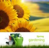 Έννοια πινάκων κηπουρικής Στοκ φωτογραφίες με δικαίωμα ελεύθερης χρήσης