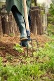 έννοια που κάνει την αρσενική εργασία άνοιξη κήπων Στοκ Εικόνες